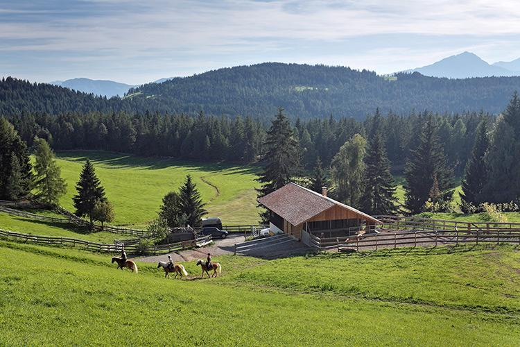 Our little horse farm in Avelengo
